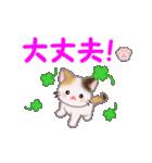 ちび三毛猫 毎日使う言葉(個別スタンプ:22)