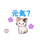 ちび三毛猫 毎日使う言葉(個別スタンプ:23)