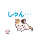ちび三毛猫 毎日使う言葉(個別スタンプ:31)