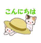 三毛猫ツインズ ひょっこり(個別スタンプ:2)