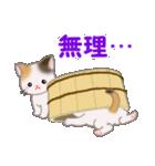 三毛猫ツインズ ひょっこり(個別スタンプ:11)