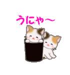 三毛猫ツインズ ひょっこり(個別スタンプ:13)