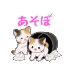 三毛猫ツインズ ひょっこり(個別スタンプ:15)