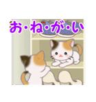 三毛猫ツインズ ひょっこり(個別スタンプ:16)