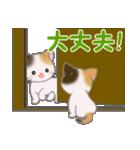 三毛猫ツインズ ひょっこり(個別スタンプ:18)