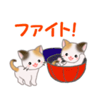 三毛猫ツインズ ひょっこり(個別スタンプ:20)