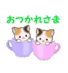 三毛猫ツインズ ひょっこり(個別スタンプ:21)
