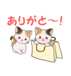 三毛猫ツインズ ひょっこり(個別スタンプ:22)