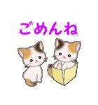 三毛猫ツインズ ひょっこり(個別スタンプ:24)