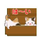 三毛猫ツインズ ひょっこり(個別スタンプ:25)