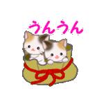 三毛猫ツインズ ひょっこり(個別スタンプ:28)