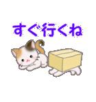 三毛猫ツインズ ひょっこり(個別スタンプ:29)