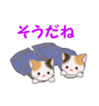 三毛猫ツインズ ひょっこり(個別スタンプ:31)