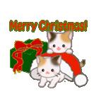 三毛猫ツインズ ひょっこり(個別スタンプ:35)