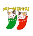 三毛猫ツインズ ひょっこり(個別スタンプ:36)