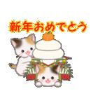 三毛猫ツインズ ひょっこり(個別スタンプ:37)