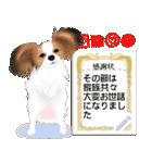 パピヨン犬のメッセージ(個別スタンプ:9)