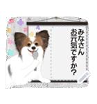 パピヨン犬のメッセージ(個別スタンプ:14)