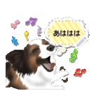 パピヨン犬のメッセージ(個別スタンプ:19)