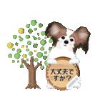 パピヨン犬のメッセージ(個別スタンプ:20)