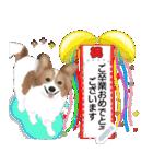 パピヨン犬のメッセージ(個別スタンプ:21)
