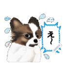 パピヨン犬のメッセージ(個別スタンプ:22)