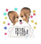 パピヨン犬のメッセージ(個別スタンプ:23)