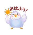 仲良しインコさん(個別スタンプ:01)