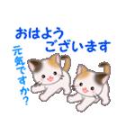 三毛猫ツインズ 毎日優しいスタンプ(個別スタンプ:1)