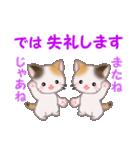 三毛猫ツインズ 毎日優しいスタンプ(個別スタンプ:3)