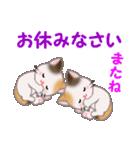 三毛猫ツインズ 毎日優しいスタンプ(個別スタンプ:4)