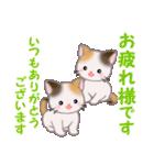 三毛猫ツインズ 毎日優しいスタンプ(個別スタンプ:5)