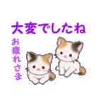 三毛猫ツインズ 毎日優しいスタンプ(個別スタンプ:8)