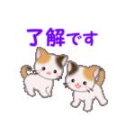 三毛猫ツインズ 毎日優しいスタンプ(個別スタンプ:9)
