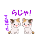 三毛猫ツインズ 毎日優しいスタンプ(個別スタンプ:11)