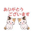 三毛猫ツインズ 毎日優しいスタンプ(個別スタンプ:13)
