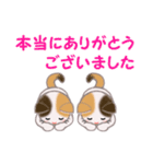 三毛猫ツインズ 毎日優しいスタンプ(個別スタンプ:14)
