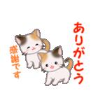 三毛猫ツインズ 毎日優しいスタンプ(個別スタンプ:15)