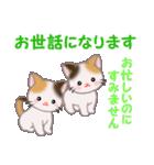 三毛猫ツインズ 毎日優しいスタンプ(個別スタンプ:21)
