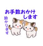 三毛猫ツインズ 毎日優しいスタンプ(個別スタンプ:23)