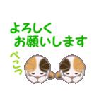 三毛猫ツインズ 毎日優しいスタンプ(個別スタンプ:24)