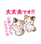三毛猫ツインズ 毎日優しいスタンプ(個別スタンプ:25)