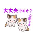 三毛猫ツインズ 毎日優しいスタンプ(個別スタンプ:26)