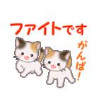 三毛猫ツインズ 毎日優しいスタンプ(個別スタンプ:27)