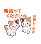 三毛猫ツインズ 毎日優しいスタンプ(個別スタンプ:28)