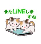 三毛猫ツインズ 毎日優しいスタンプ(個別スタンプ:30)