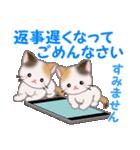 三毛猫ツインズ 毎日優しいスタンプ(個別スタンプ:31)