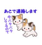 三毛猫ツインズ 毎日優しいスタンプ(個別スタンプ:32)