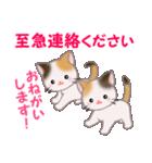 三毛猫ツインズ 毎日優しいスタンプ(個別スタンプ:33)