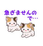 三毛猫ツインズ 毎日優しいスタンプ(個別スタンプ:36)